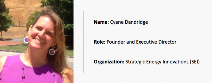 Community Spotlight: Cyane Dandridge, Founder and Executive Director at Strategic Energy Innovations